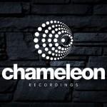 chameleon_optimized